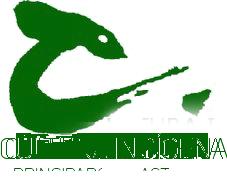 Cultura Indígena ONG